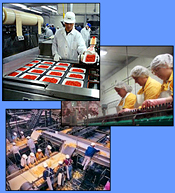 Refrigeration equipment for food processing facilities.